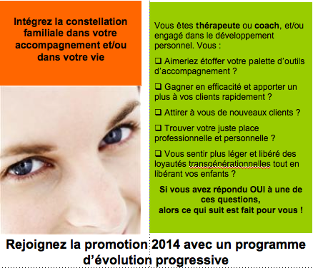 formation aux constellations familiales, 2014